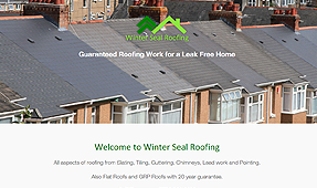 Winter Seal Roofing